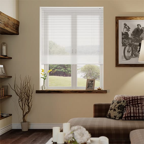 DuoVoile Snow Pleated Blind